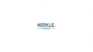 Merkle Internship