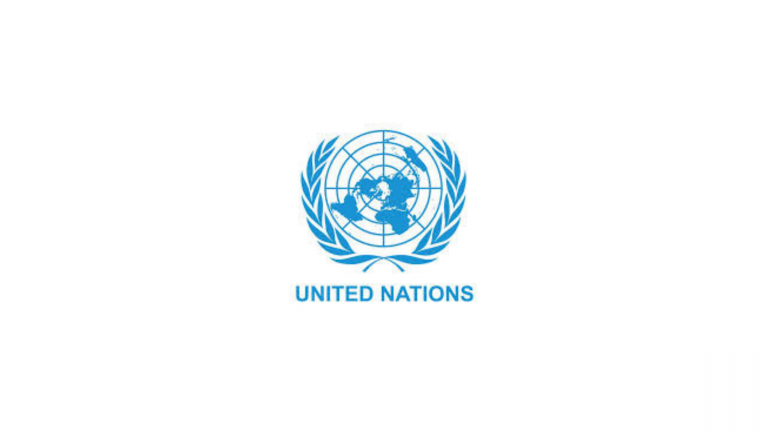 United Nations Internship