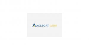 Acesoft Labs India Pvt Ltd Internship