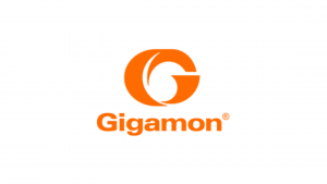 Gigamon Internship