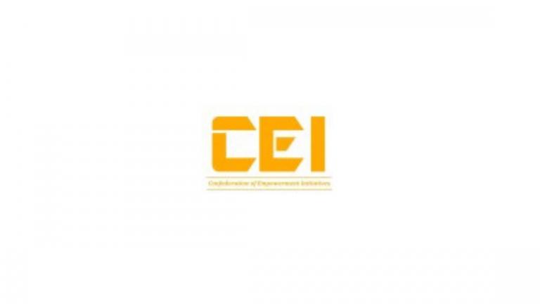 CEI Internship