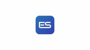 Ecera System Internship