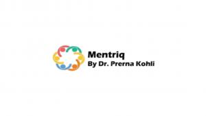 Mentriq Internship