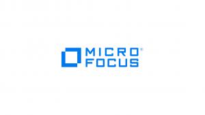 Micro Focus Internship