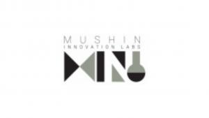 Mushin Innovation Labs Pvt Ltd Internship