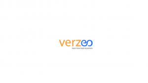Verzeo Internship