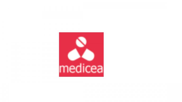 Medicea Technology Solutions Internship