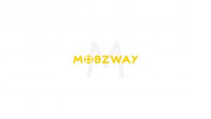 Mobzway Internship