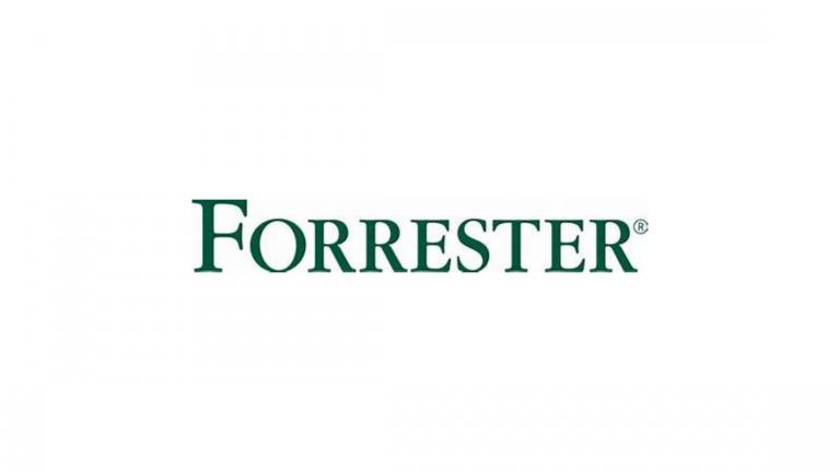 Forrester Internship