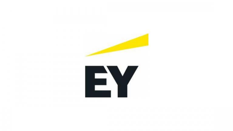 EY Internship